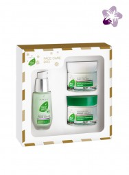 Aloe Vera Gesichts-Pflege-Box